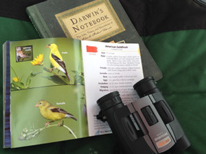 """Solo camping means lots of time to read books, including """"Darwin's Notebook."""""""